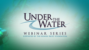 Under The Water Webinars